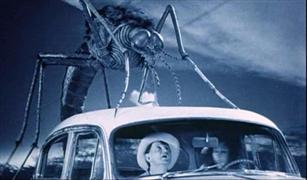 فيروس زيكا يهدد صناعه السيارات عالميا