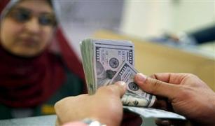 أسعار الدولار تتراجع  30 قرشا بعد شطب 9 شركات صرافة متورطة في المضاربة