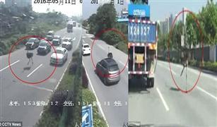 نعامة هاربة تربك حركة السيارات جنوب الصين