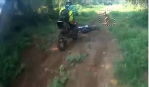 مفاجأة بالفيديو:ظهور قزم منقرض من 3 قرون فى سباق دراجات نارية باندونسيا
