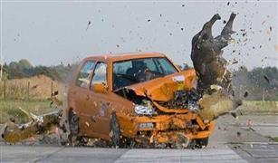خنزيز يتسبب فى حوادث سيارات وإصابات بالجمله على الطريق السريع