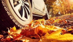 بعد بداية فصل الخريف.. كيف تقود سيارتك بشكل أمن