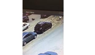 بالفيديو.. سيدة تتعرض للسرقة من سيارة فارهة بمدينة نصر