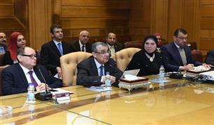 4 وزراء يجتمعون لتوطين صناعة السيارات الكهربائية في مصر.. وتصور لنشر محطات الشحن