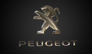 إنتبه قبل الشراء والخديعة..بيجو تحذر من شراء 36 سيارة في مصر