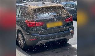 آلاف النحل يهاجم سيارة BMW X1 بشكل مخيف..  والسبب غريب| فيديو
